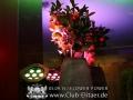 FlowerPower (15)